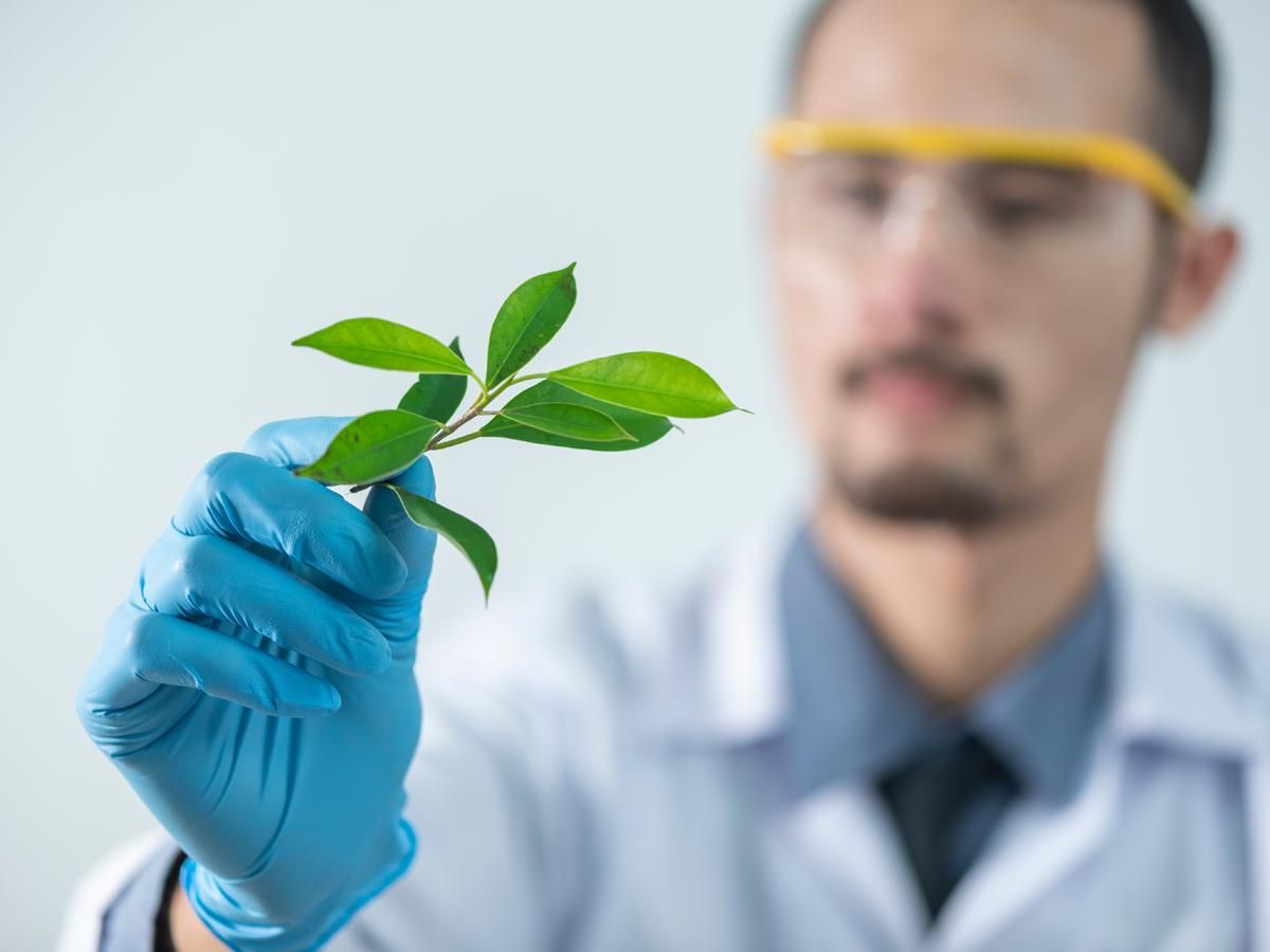 Biotechnology in Lower Austria