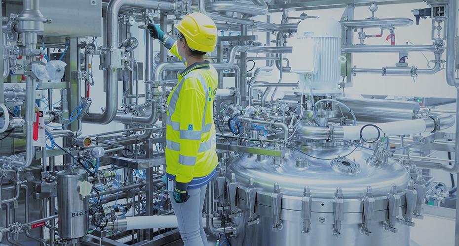 MSD Krems Produktion